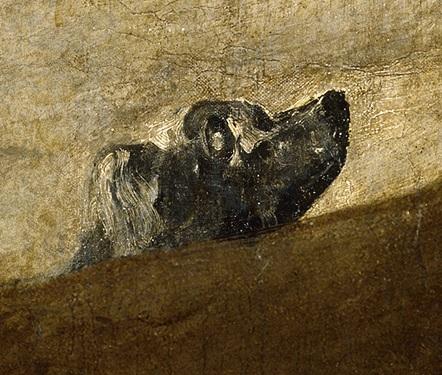 Perro enterrado en la arena